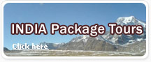 India Package Tours
